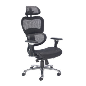 Chachi 24hr Posture Chair