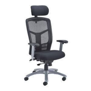 Fonz 24 Hour Posture Chair